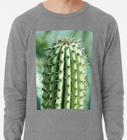 Kaktus-Fotografie Leichter Pullover