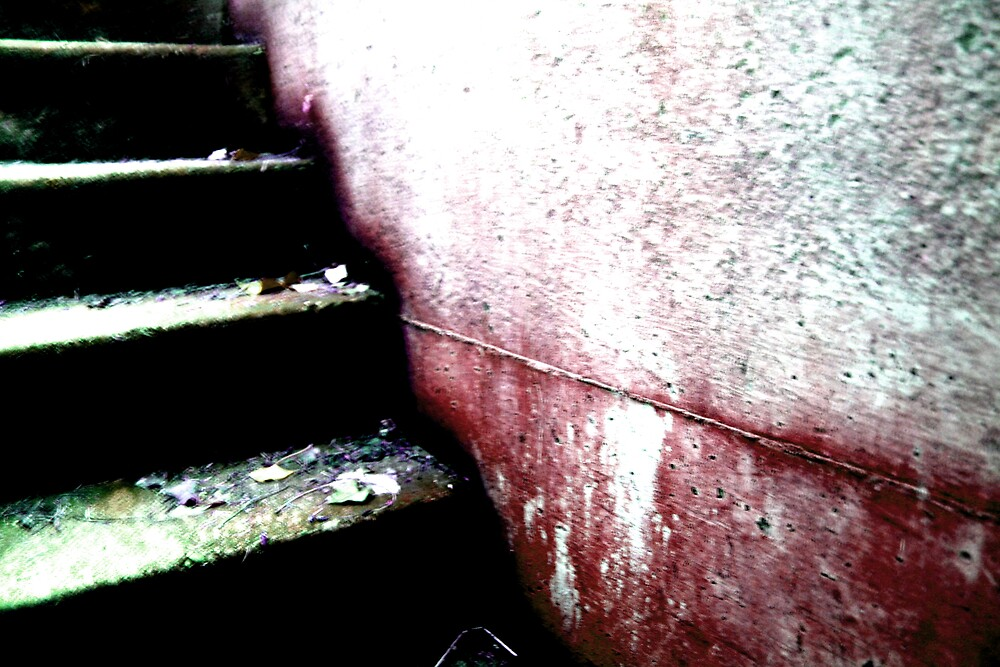 The Stairs by Godfrey Blackwood