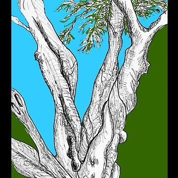 banrai's Olive Tree by JamesLHamilton