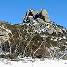 The Cathedral, Mt Buffalo, Victoria, Australia. by kaysharp