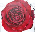 Like a red rag to a Bull by Lynne Kells (earthangel)