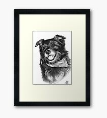 Laughing Dog Framed Print