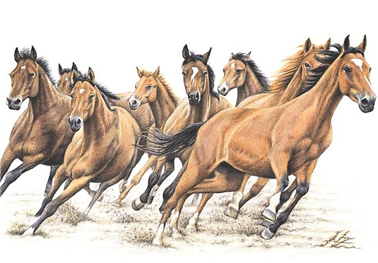 Trakehner Horses by Nicole Zeug