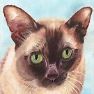 Charlie the Burmese cat by cathyscreations