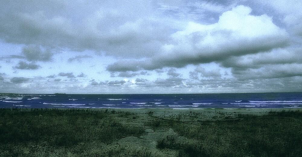 Storm Shore by Jeff Harris
