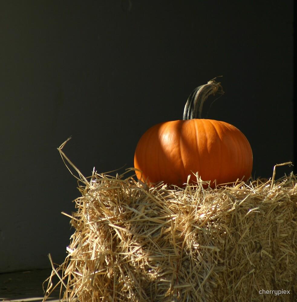 Lone Pumpkin by cherrypiex
