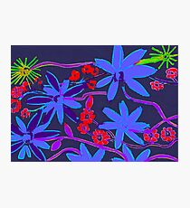 Blue and purple flowers. Photographic Print