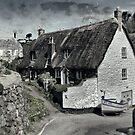 Cadgwith High Street by Country  Pursuits