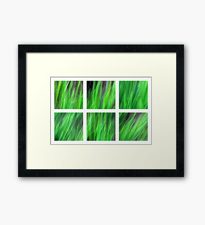 Watching the Grass Grow Framed Print