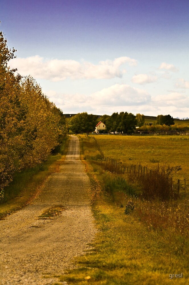 Back Country Road in the fall... by gresl
