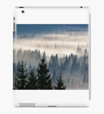 coniferous forest in foggy mountains iPad Case/Skin