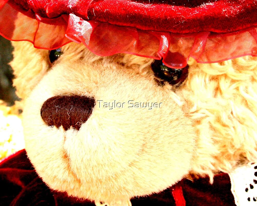 Mrs. Bear by Taylor Sawyer