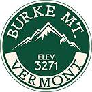 BURKE MOUNTAIN VERMONT SKIING SKI SNOWBOARD HIKING CLIMBING BIKING by MyHandmadeSigns