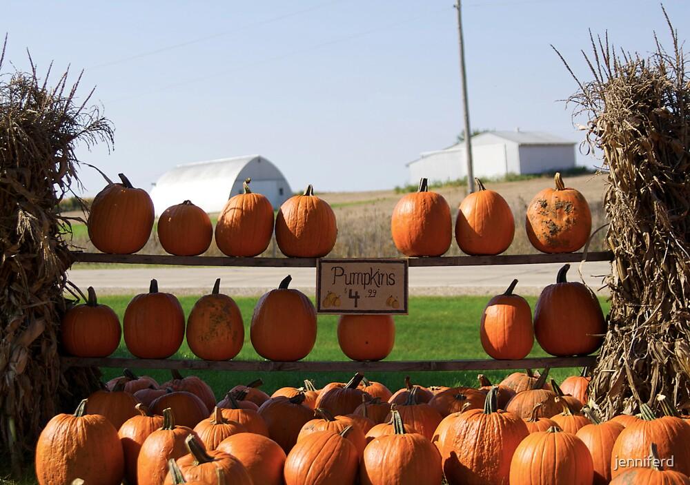 Pumpkins For Sale by jenniferd