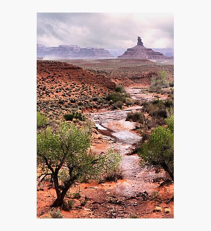 Off The Beaten Track Photographic Print