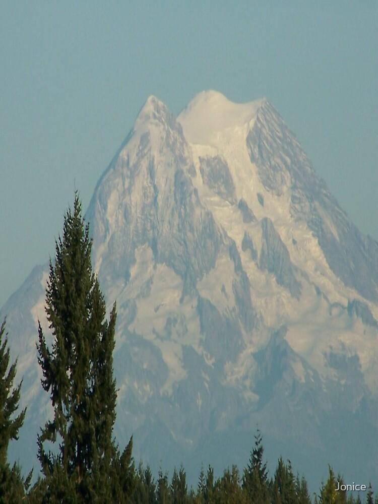 Mt. Rainier Shot 2 by Jonice