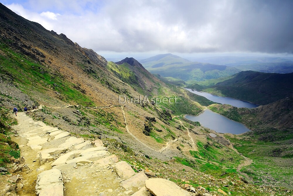 The Pyg Track by DualAspect