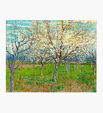 """Van Gogh """"The Pink Orchard"""", 1988 Photographic Print"""