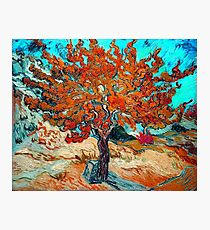 """Van Gogh """"The Mulberry Tree"""", 1889 modified Photographic Print"""