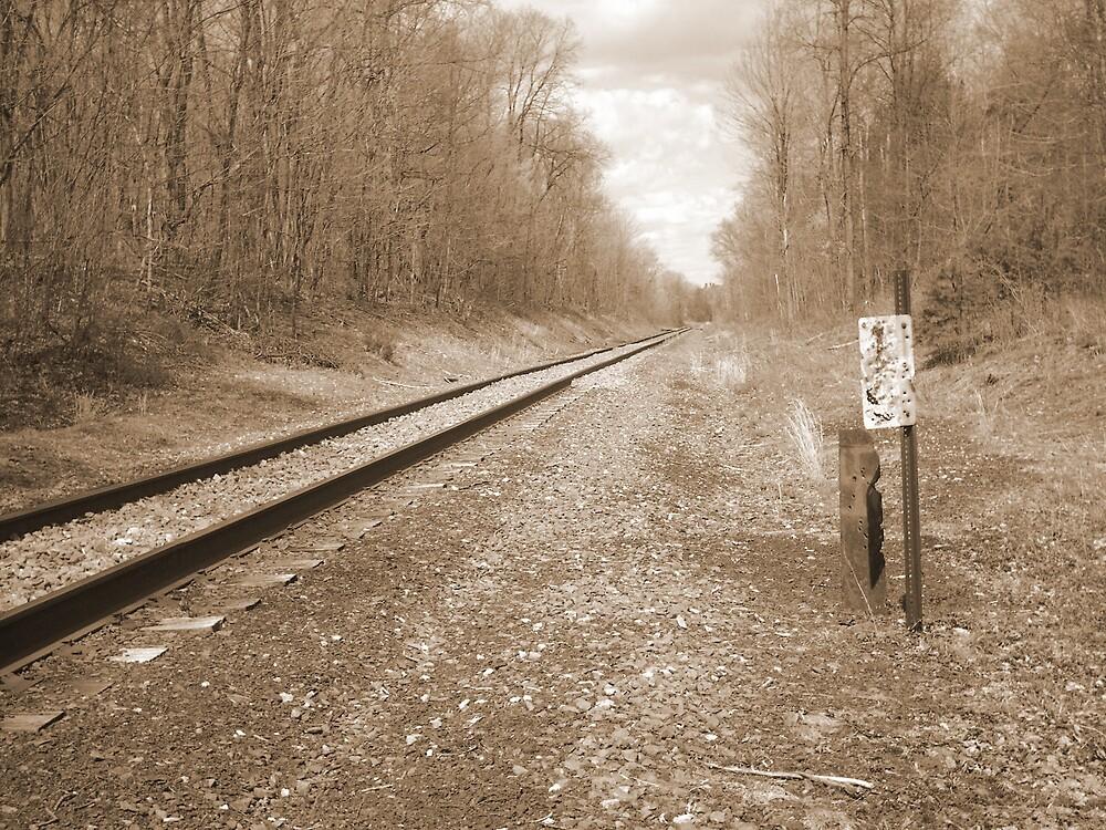 Railroad Tracks by Boo13
