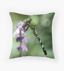 Moth Munchin' Throw Pillow