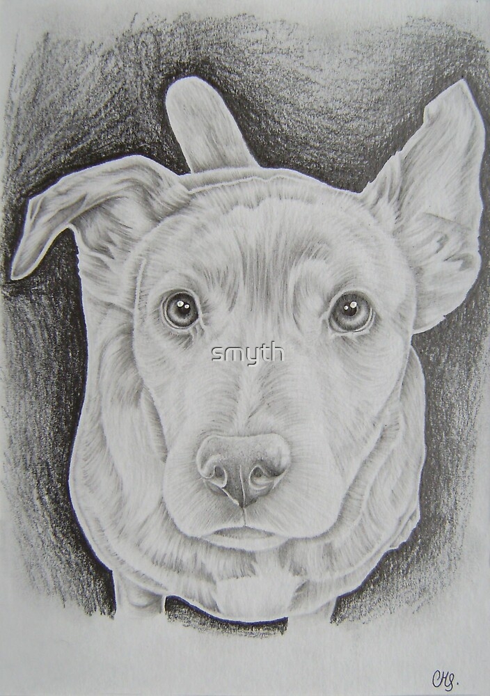 dog3 by craig smith