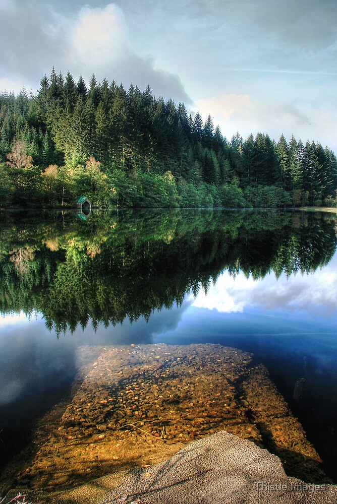 Wondrous Reflections by Thistle Images
