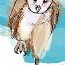 Eule - Schleuereule - barn owl von Constanze von der Goltz