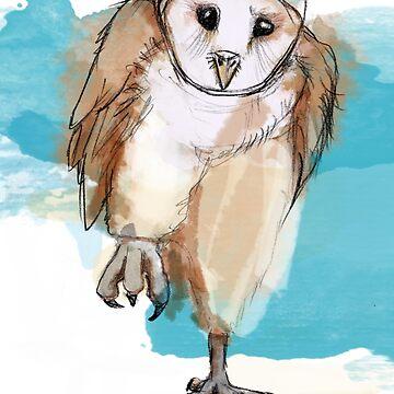 Eule - Schleuereule - barn owl von CGoltz