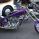 Purple Explosion by CassPics