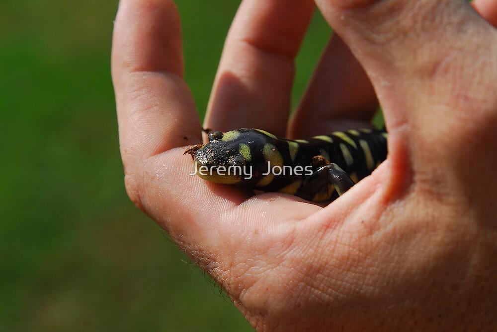 My little buddy! by Jeremy  Jones