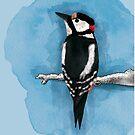 Specht - Alle Vögel sind schon da von Constanze von der Goltz