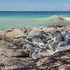Breaking Wave on the Gulf! by John  Kapusta