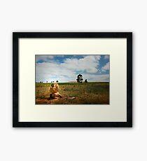 The Hutt River Province Framed Print
