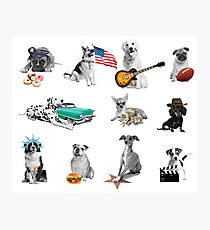 USA Hot Dogs Photographic Print