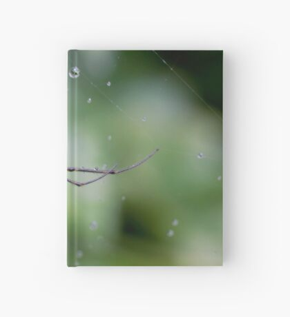 Spiders have jewels on their legs Hardcover Journal
