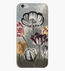 Vinilo o funda para iPhone Botánico - Crear historia de arte