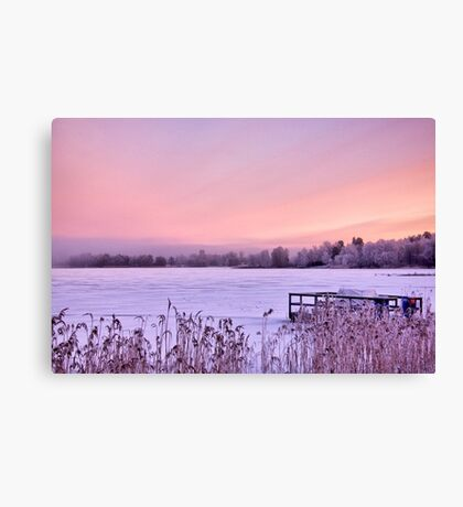 Lilac dawn Canvas Print