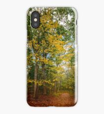 October Forest (2) iPhone Case/Skin