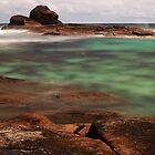 Spring in Western Australia by Angelika  Vogel