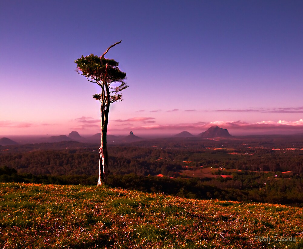 Glasshouse mountains  by Flash  Cassidy