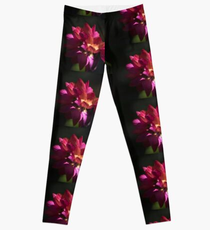 Flowers of Red and Pink Leggings