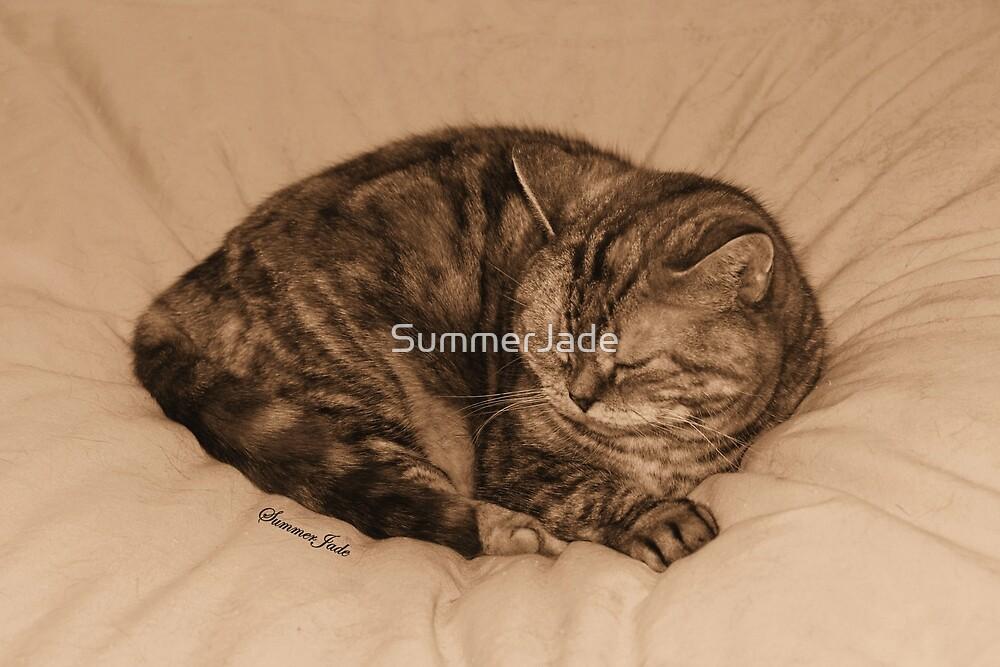 Little Cat Takes a Little Cat Nap by SummerJade