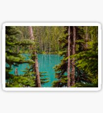 Lesser Lake Garibaldi Through the Trees Sticker