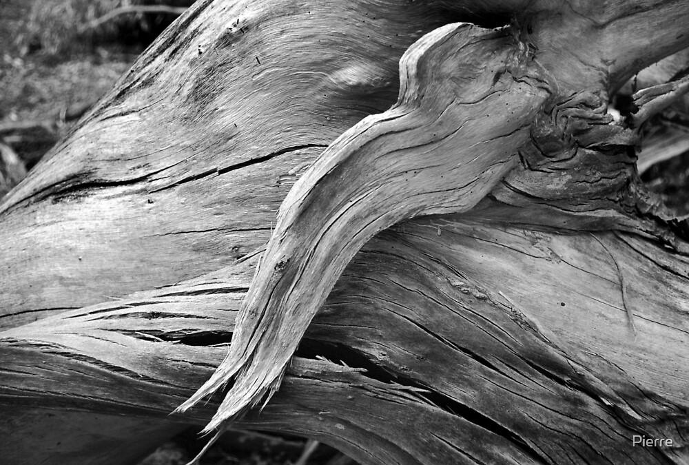 Deadwood by Pierre