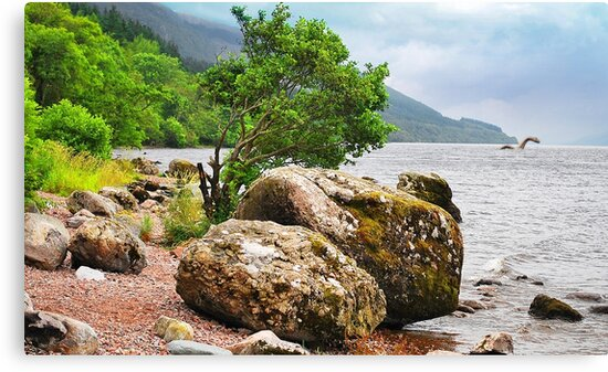 On the shores of Loch Ness - AGAIN by Anthony Hedger Photography