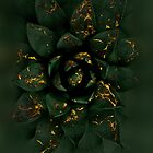 Gold Fire Succulent by bicone
