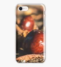 Fallen chestnuts iPhone Case/Skin