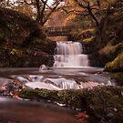 Autumn Falls by aka-photography