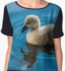 The Ugly Duckling Women's Chiffon Top